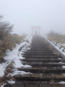 幻想的な参道。めちゃくちゃ寒かったです。